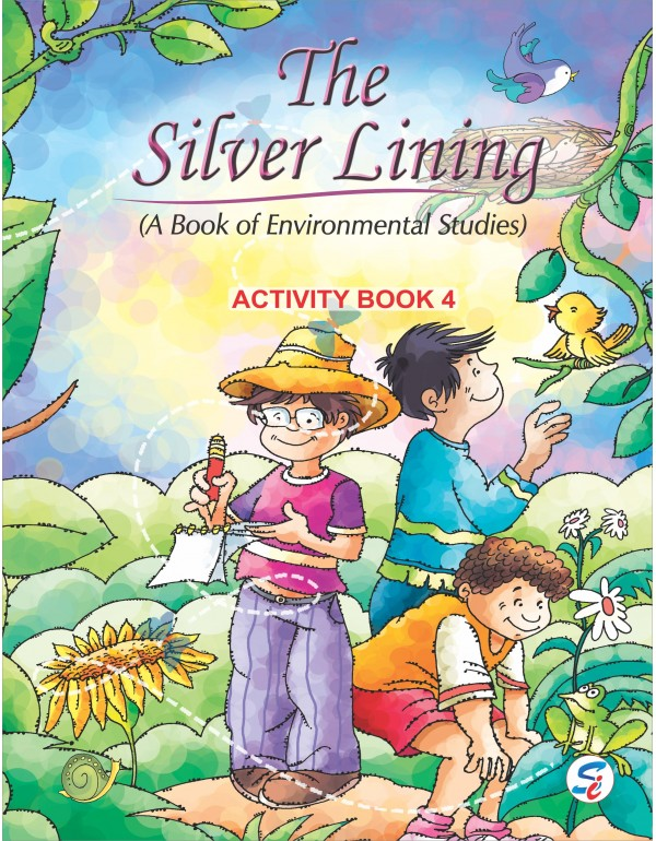 The Silver Lining EVS Activity -4