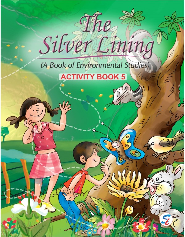 The Silver Lining EVS Activity -5